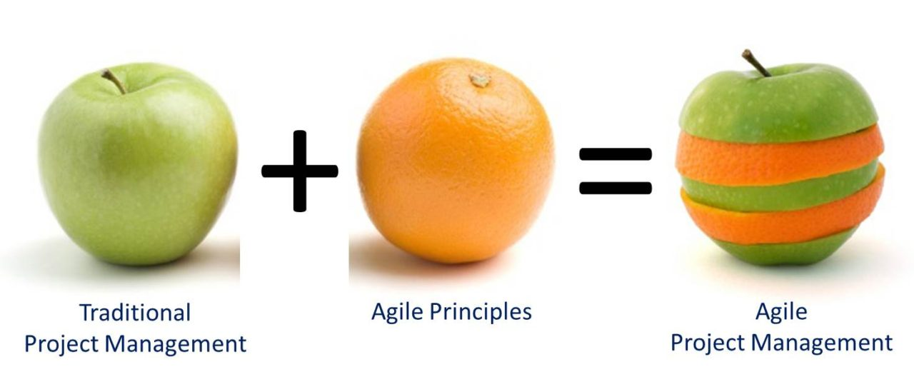 project manager agile